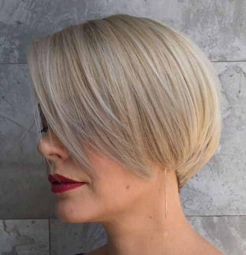 Sleek Professional Pixie Bob